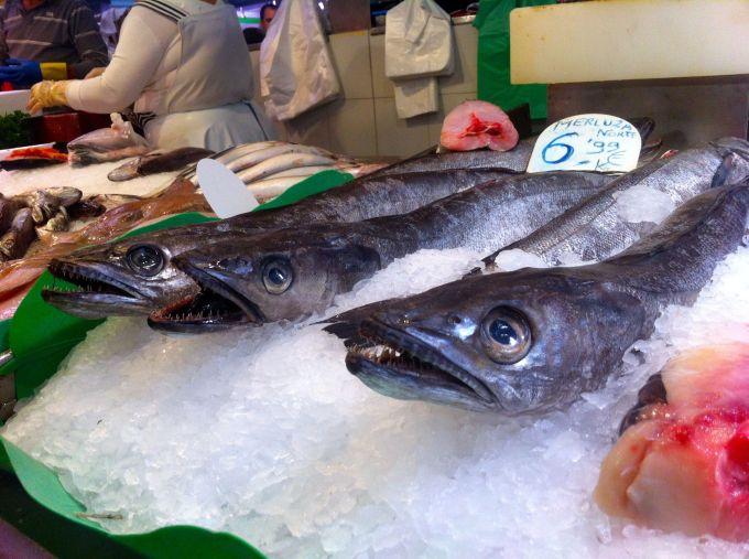 bcnfish