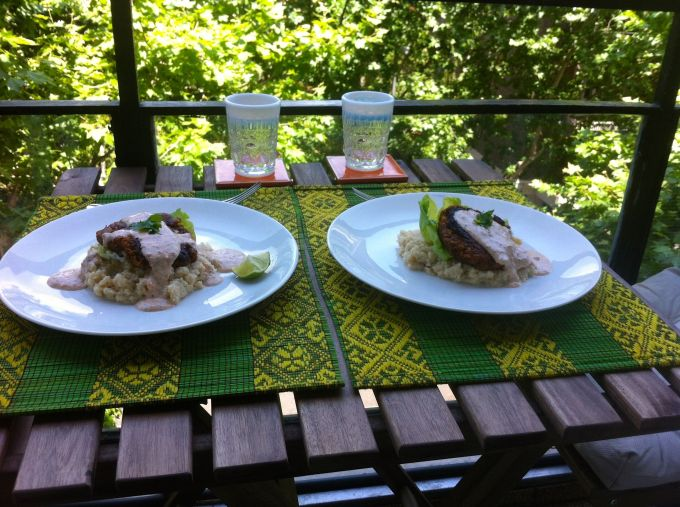 A lovely balcony lunch of lentil burgers and mashed cauliflower.