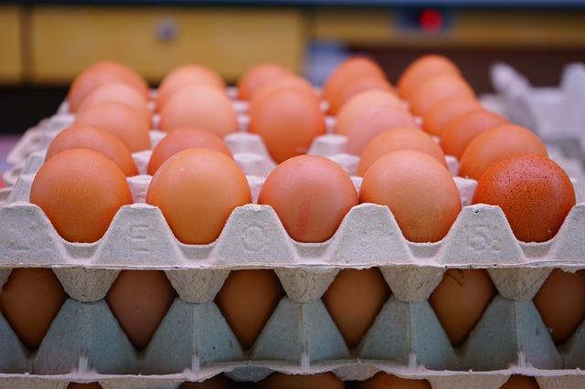 eggsblog